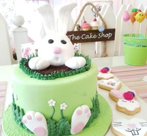 Easter Bunny Cake  ( 2 )